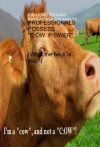 """English (PLUS) Professional Language User Solutions - BOOK #5 - PROFESSIONALS POSSESS """"C:OW  P:OWER"""" (What the heck is that?)"""