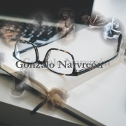 Gonzalo Alcaide Narvreón