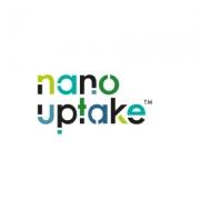 Nanouptake