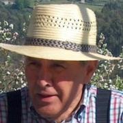 Manuel Pérez Villanueva