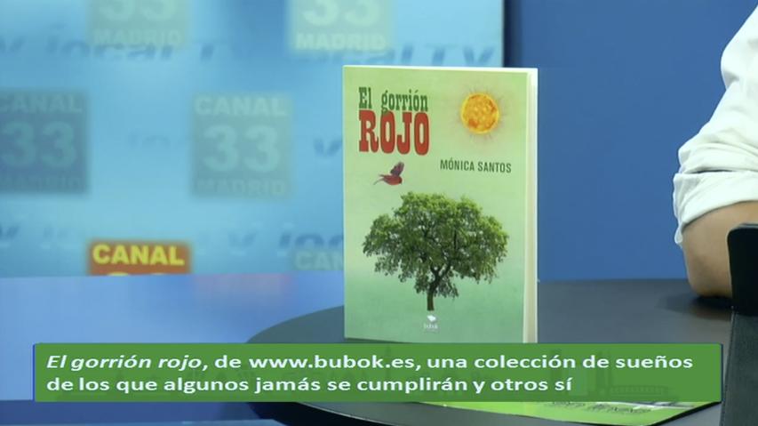 Entrevista a Mónica Santos, autora de