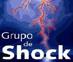 Grupo Nacional de Shock