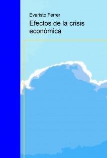 Efectos de la crisis económica