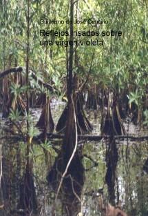 Reflejos irisados sobre una virgen violeta