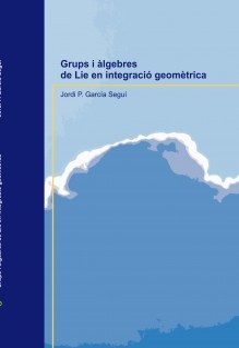 Grups i àlgebres de Lie en integració geomètrica