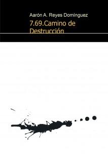 7.69.Camino de Destrucción
