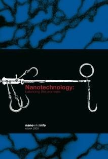 Nanotechnology: balancing the promises