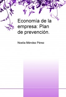 Economía de la empresa: Plan de prevención.