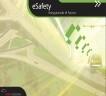 Análisis estratégico de e-Safety en España