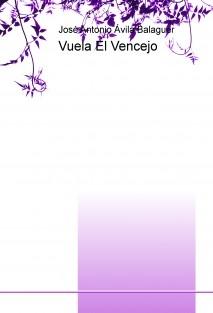 Vuela El Vencejo
