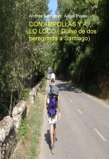 CON AMPOLLAS Y A LO LOCO ( Diario de dos peregrinos a Santiago)