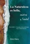 La Naturaleza es bella, caótica y fractal - Volumen 1: Fractales, Irreversibilidad, Azar y Determinismo