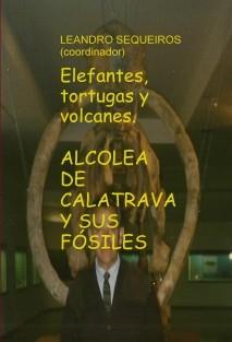 Elefantes, tortugas y volcanes. ALCOLEA DE CALATRAVA Y SUS FÓSILES