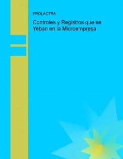 Controles y Registros que se Yeban en la Microempresa