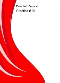 Practica # 01