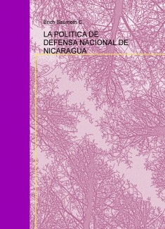 LA POLITICA DE DEFENSA NACIONAL DE NICARAGUA
