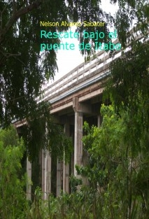 Rescate bajo el puente de Itabo