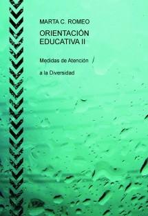 ORIENTACIÓN EDUCATIVA II   Medidas de Atención a la Diversidad