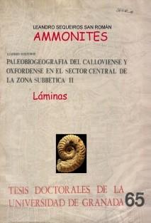 """AMMONITES. Láminas de """"Paleobiogeografía del Calloviense y Oxfordiense en el Sector Central de las Cordilleras Béticas"""""""