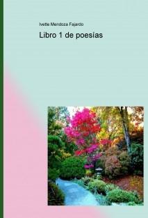 Libro 1 de poesías