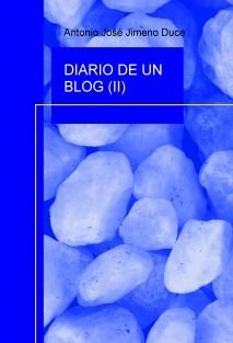 DIARIO DE UN BLOG (II)