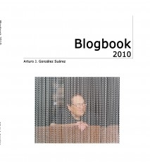 Blogbook 2010