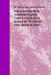 """Breve estudio del estilo de la novelista Ángeles Caso, a través de la lectura de """"El mundo visto desde el cielo"""""""