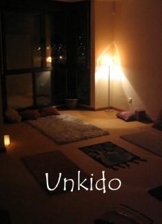 Unkido: Resumen de la actividad