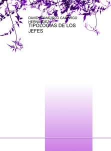 TIPOLOGÍAS DE LOS JEFES
