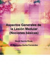 Aspectos Generales de la Lesión Medular (Nociones básicas)