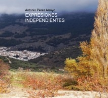EXPRESIONES INDEPENDIENTES