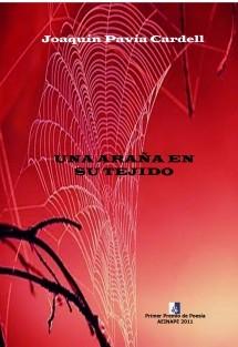 Una araña en su tejido