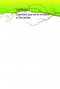 Capítulos que se le olvidaron a Cervantes
