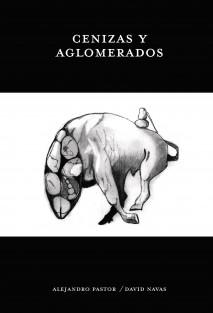 CENIZAS Y AGLOMERADOS