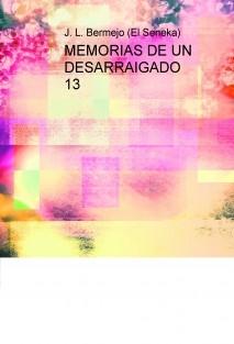 MEMORIAS DE UN DESARRAIGADO 13