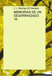 MEMORIAS DE UN DESARRAIGADO 16