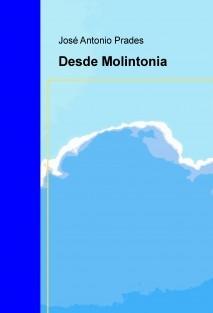 Desde Molintonia