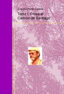 Tomo I. Prosa al Camino de Santiago.