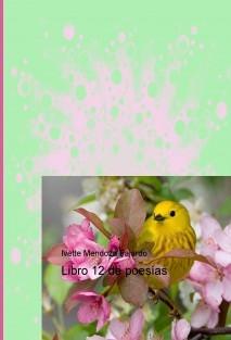 Libro 12 de poesías
