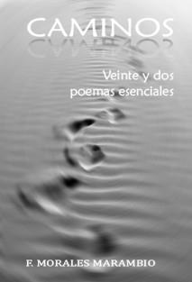 CAMINOS, 22 poemas esenciales