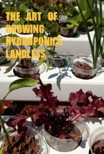 THE ART OF GROWING HYDROPONICS LANDLESS