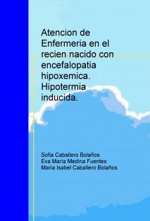 Atencion de Enfermeria en el recien nacido con encefalopatia hipoxemica: hipotermia inducida.