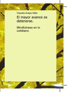 El mayor avance es detenerse, mindfulness en lo cotidiano.