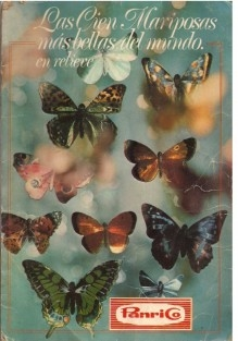 Bellas Mariposas Pdf