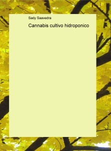 Cannabis cultivo hidroponico