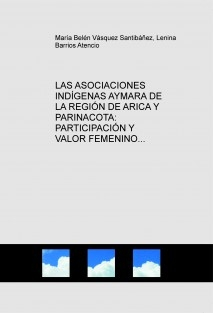 LAS ASOCIACIONES INDÍGENAS AYMARA DE LA REGIÓN DE ARICA Y PARINACOTA: PARTICIPACIÓN Y VALOR FEMENINO