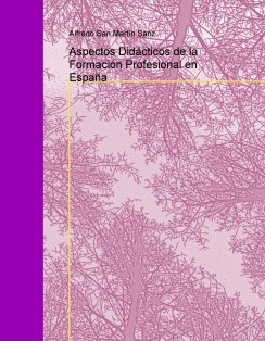 Aspectos Didácticos de la Formación Profesional en España
