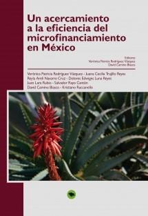 Un acercamiento a la eficiencia del microfinanciamiento en México