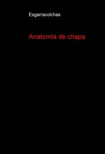Anatomía de chapa