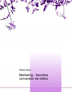 Marketing - Secretos conversión de trafico